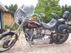 Used 1989 Harley-Davidson® Softail® Custom