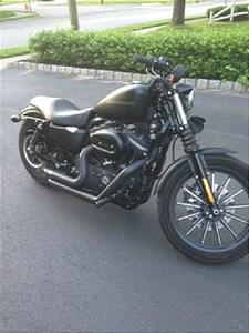 Used 2011 Harley-Davidson® Sportster® 883