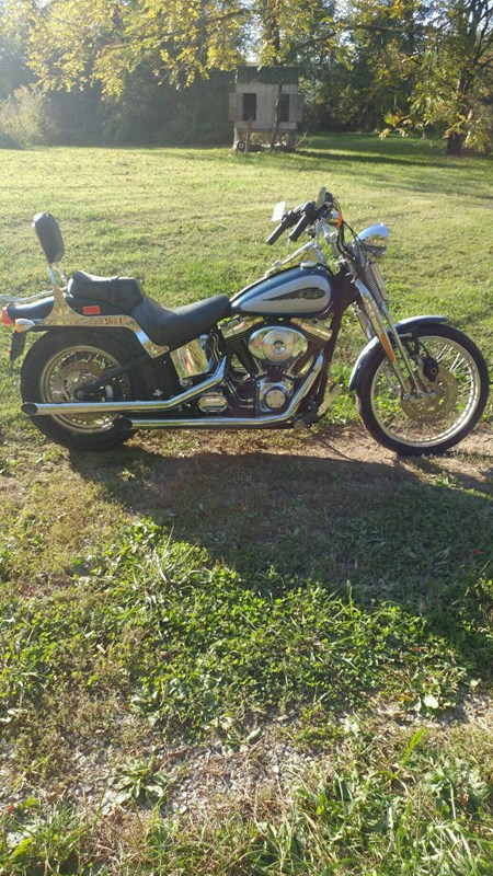 Photo of a 2002 Harley-Davidson® FXSTS/I Springer® Softail®