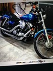 Used 1994 Harley-Davidson® Low Rider® Custom